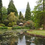 Wiosna w ogrodzie – jak udekorować przestrzeń?